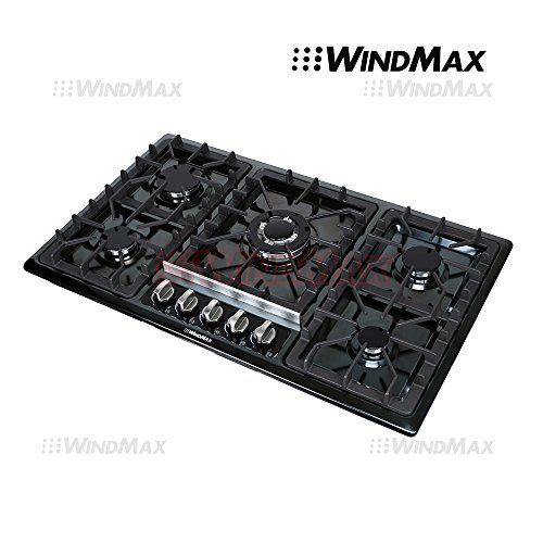Windmax WM5113-1