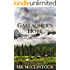 Gallagher's Hope (Montana Gallagher Series Book 2)