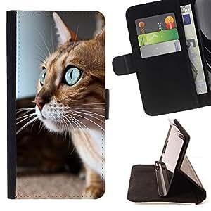 Momo Phone Case / Flip Funda de Cuero Case Cover - Savannah Serengeti Ojos azules gato jugando; - Samsung Galaxy S6 Edge Plus / S6 Edge+ G928