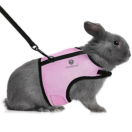 Rabbit Harness & Leash - for Running, Walking, Jogging Hands-Free - Allows Bunny to Hop Unrestricted - Stylish Accessory - Soft, Breathable mesh Nylon Fabric - Adjustable with Touch Fasteners - Furry Friends Leash Collection