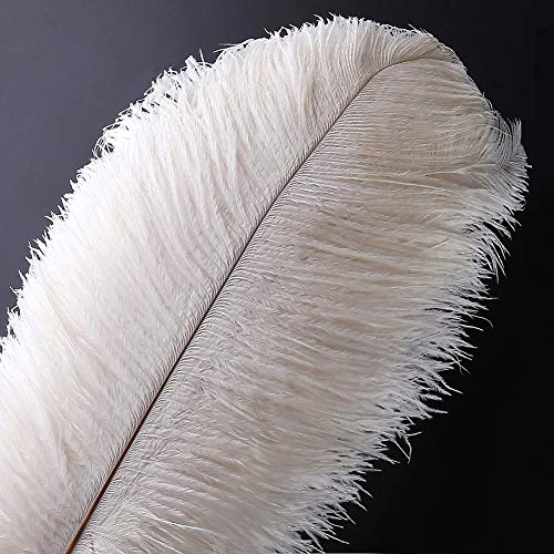 10pcs Natural Ostrich Feather Craft 14-16inch(35-40cm) Plume for Wedding Centerpieces Home Decoration (White)