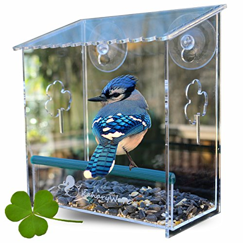 Kanaryware Window Bird Feeder - Built to Last A Lifetime - Decorate Your House with Beautiful Wild Birds - 100% Clear Acrylic - Drain Holes - Hooks & 2 Extra Suction Cups Included - Great Gift