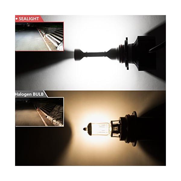 9005HB3 LED High Beam Headlight Bulbs Conversion Kit DOT Approved SEALIGHT X1 Series 9145H10 Fog Light Bulbs Xenon White 6000K