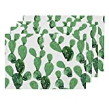 Roostery Watercolor 4pc Organic Cotton Sateen Cloth Placemat Set - Paddle Cactus Cactus Cacti Desert Plants Southwest by Hipkiddesigns (Set of 4) 13 x 19in
