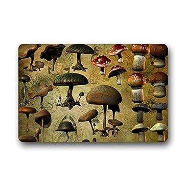 Heymats Novelty Design Custom Mushroom Indoor/Outdoor Doormat Machine-washable Floor/Bath Decor Mats Rug