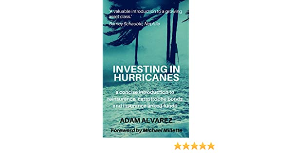 Amazon com: Investing in Hurricanes: A concise introduction