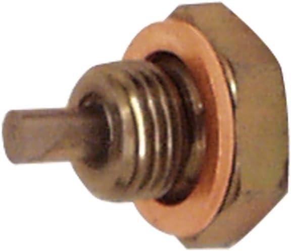 Moroso 97002 1//2-20 Thread Drain Plug with 3//4 Head