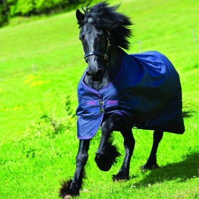 Horseware Amigo Bravo 12 XL Turnout Lite Sheet 84 by Horseware Ireland