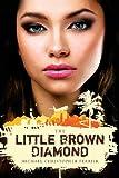 The Little Brown Diamond, Michael Christopher Ferrier, 1482022567