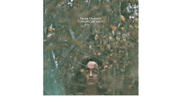 Florencia Y Las Zapatillas by Felipe Grandón on Amazon Music - Amazon.com
