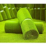 MTBRO Artificial Grass, Realistic Artificial Grass Rug, Outdoor Artificial Turf for Pets, Blade Height 1.5