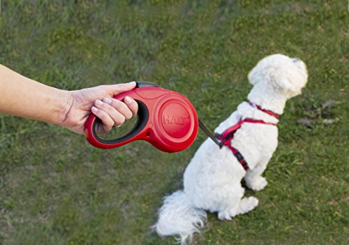 The Company of Animals - HALTI Retractable Dog Leash - One Button Break and Lock - Large - Red by The Company of Animals (Image #3)