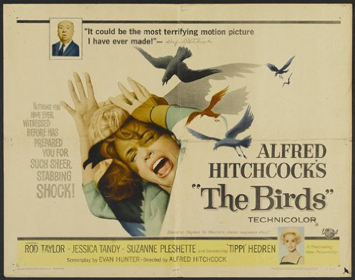 birds movie poster alfred hitchcock