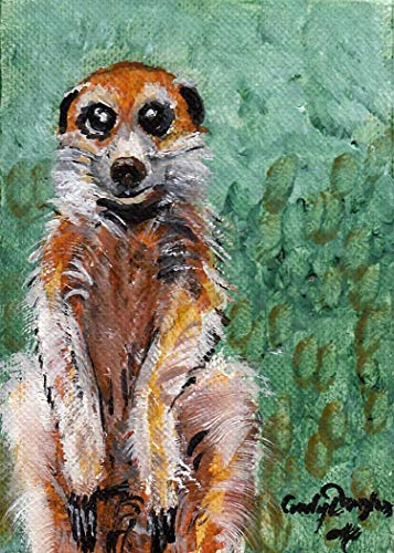 ACEO, Mercat, Mongoose, Herpestid, Card Sized Oil Painting ()