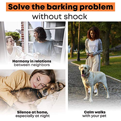DoGRange Rechargeable Dog Bark Collar with Dual Motor Function - Humane No Shock Training - Vibration & Beeps Active Modes - All Breeds Barking - Adjustable for Small, Medium, Large Dogs - No Remote