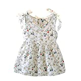 FEITONG Toddler Baby Kids Girls Sleeveless Ribbons Bow Floral Dress Princess Dresses(White,2-3Y)