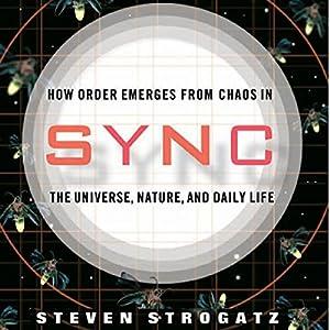 Sync Hörbuch