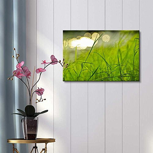 Beautiful Scenery Landscape Fresh Green Grass in a Park Beside a River Wall Decor