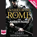 The Amber Road | Harry Sidebottom