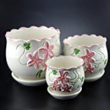 (US) 3 Pack Ceramic Flower Plant Pot, Size 4'', 6'' and 7'' (Rhododendron)