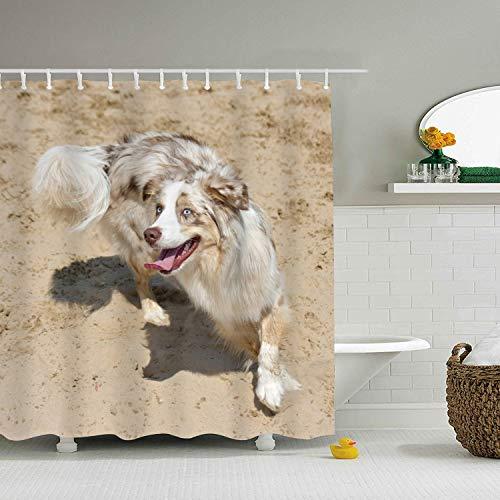 Cafl Animal Australian Shepherd Dogs Shower Curtains Bath Curtains 65 × -