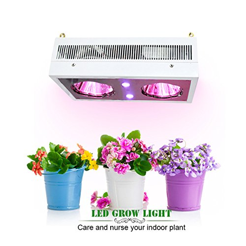 Full Spectrum LED Grow Light UV&IR Plant Lights COB Reflector Lighting For Indoor Plants Veg and Flower by AXHJ