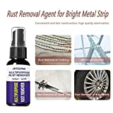 Juner Powerful Rust Remover 30ml, Professional Rust Stain Remover Agent Non-Toxic Anti Rust Lubricant Rust Dissolver for Metal Surface Chrome Paint Car Maintenance Iron Powder Cleaning