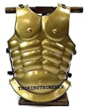 THORINSTRUMENTS Roman Muscle Armor Antique Brass Jacket Collectible Replica RENACTMENT Costume