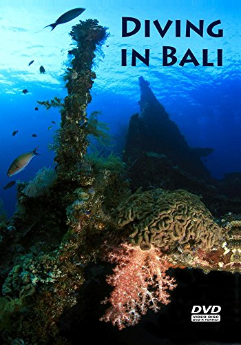 (Diving in Bali)