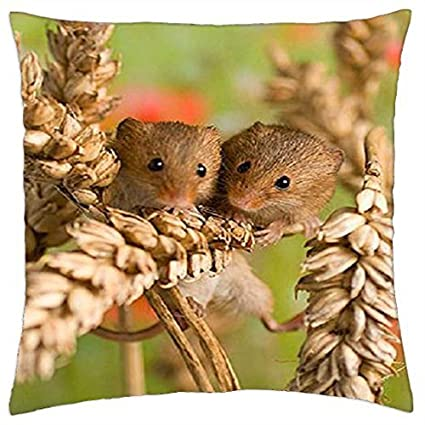 Amazon.com: Sale Shower Curtain Field mice - Throw Pillow Cover Case ...