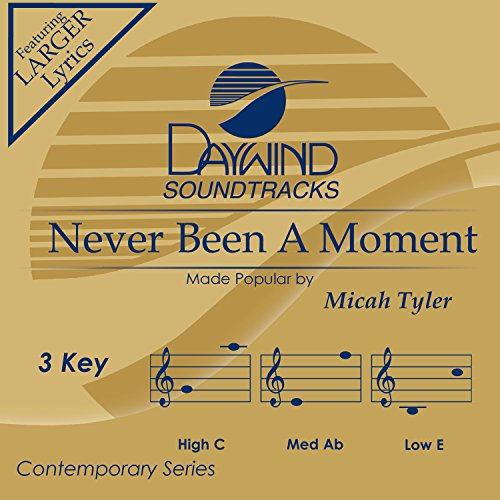 Never Been a Moment Album Cover