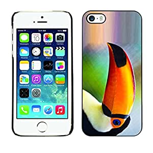 Qstar Arte & diseño plástico duro Fundas Cover Cubre Hard Case Cover para Apple iPhone 5 / iPhone 5S ( Parrot Bird Tropical Nature Orange Rainforest)