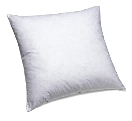 Amazoncom Dreamhome 20 X 20 Square Poly Pillow Insert 1 White