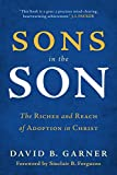 img - for Sons in the Son: The Riches and Reach of Adoption in Christ book / textbook / text book