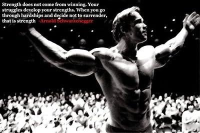 Arnold Schwarzenegger Bodybuilding Motivational Poster 12X18'' Gym Decoration 13