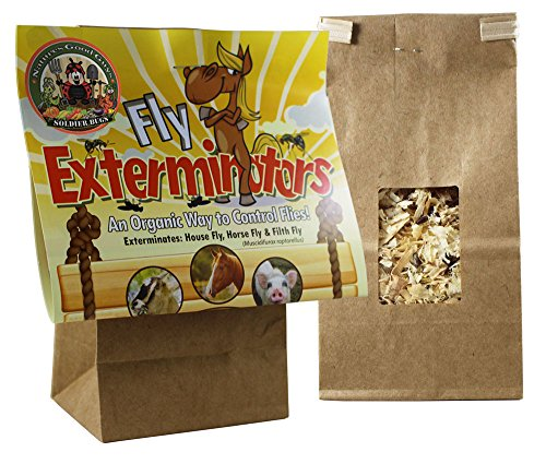 Fly Control - 2,000 Fly Exterminators (Guaranteed Live Delivery!) by Bug Sales