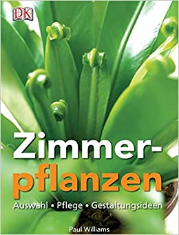 Zimmerpflanzen Gestaltungsideen zimmerpflanzen auswahl pflege gestaltungsideen amazon de paul
