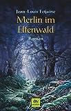 Merlin im Elfenwald: Roman