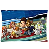 Paw Patrol Custom Zippered Pillow Cases 20x30 (Twin sides)