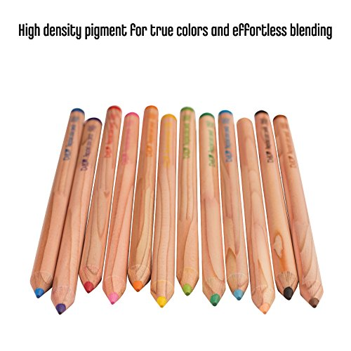 Tombow Recycled Colored Pencils, Assorted Colors, 12-Pack Photo #4