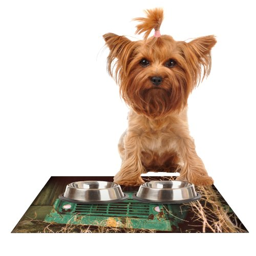 Kess InHouse Angie Turner Ford  Teal Car Feeding Mat for Pet Bowl, 18 by 13