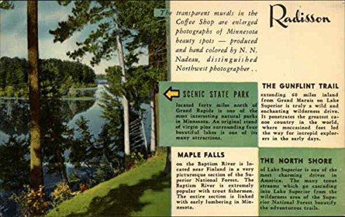 the-radisson-hotel-minneapolis-minnesota-original-vintage-postcard