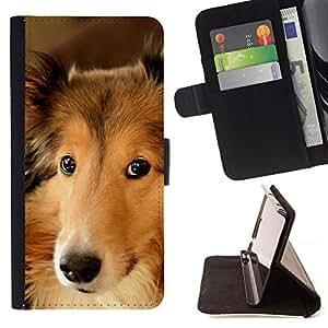 Stuss Case / Funda Carcasa PU de Cuero - Border collie inteligente perro canino Mascota - Samsung Galaxy E5 E500