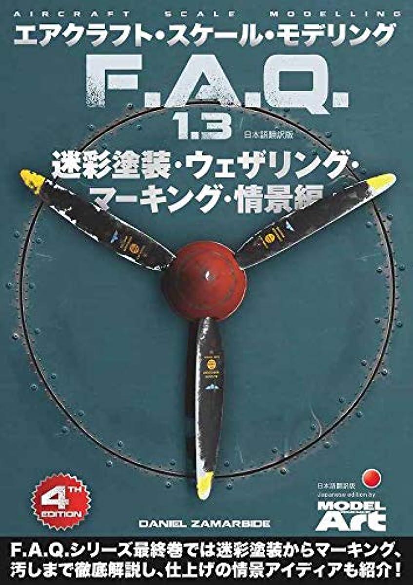[해외] 항공기스케일모델링F.A.Q.1.3 카무플라주 도장하이퍼 디테일마킹정경편 일본어 번역판
