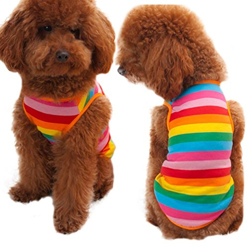 Hot Pet Sweaters! AMA(TM) Pet Doggie Small Dog Cat Soft Warm Rainbow Striped Knitwear Sweater Clothes Puppy Shirt Vest Coat Apparel Costume (L, A)