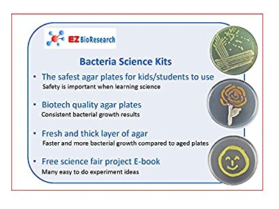 EZ BioResearch Bacteria Science Kit (IV): Top Science Fair Project Kit. Prepoured LB-Agar Plates And Cotton Swabs. Exclusive Free Science Fair Project E-Book Packed With Award Winning Experiments. from EZ BioResearch