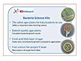 EZ BioResearch Bacteria Science Kit (IV): Top