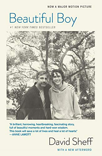 Beautiful Boy (Tie-In): A Father's Journey Through His Son's Addiction