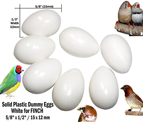 DummyEggs FINCH Stop Laying! Fake Bird Eggs White Solid Plastic Realistic - 5/8'' x 1/2'' (15 x 12 mm) Society Finch, Zebra Finch, Gouldian Finch, Spice (14 White) by DummyEggs