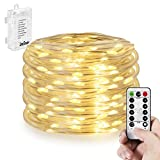 fine fairy garden design Outdoor Rope Lights ,Battery Operated 50 LED 16.4FT Waterproof String Lights 8 Modes Twinkling Fairy Lights with Remote Timer for Garden Patio Outdoor Decoration Christmas Rope Lights (Warm White)